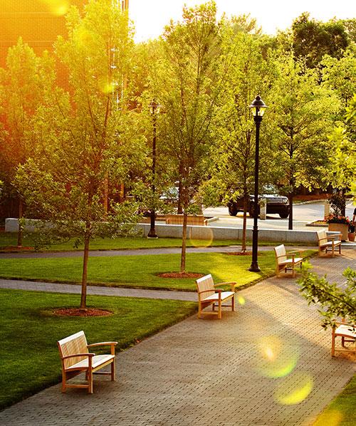 Green Space at Bentley University