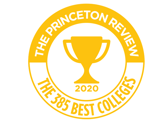 2020 princeton review logo